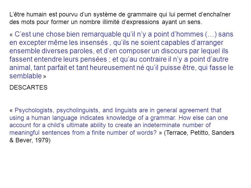 L'être humain est pourvu d'un système de grammaire qui lui permet d'enchaîner des mots pour former un nombre illimité d'expressions ayant un sens.