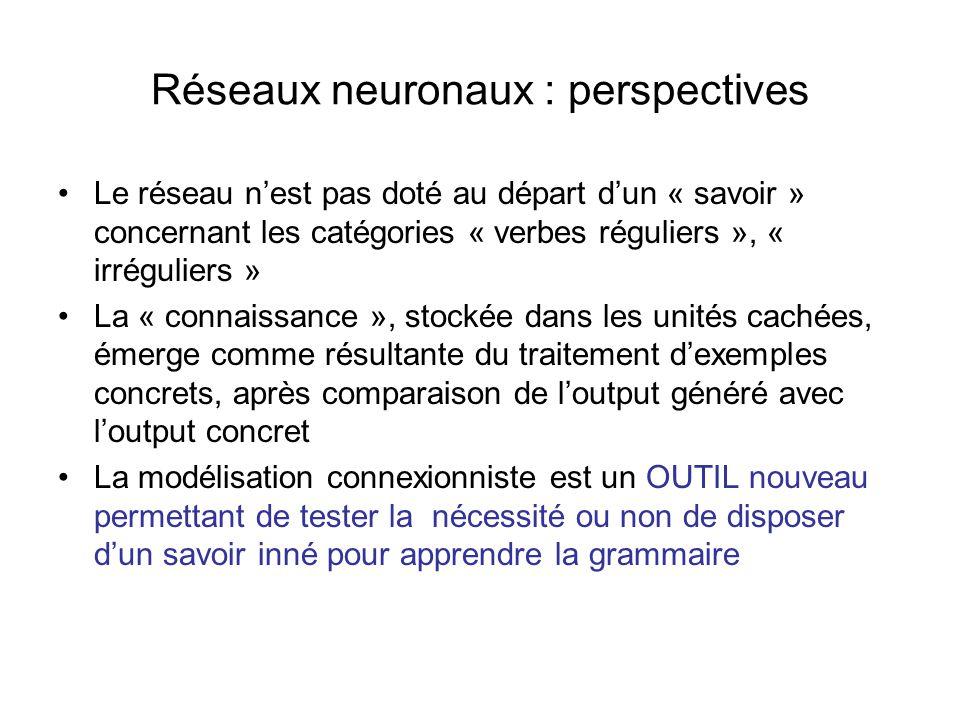 Réseaux neuronaux : perspectives