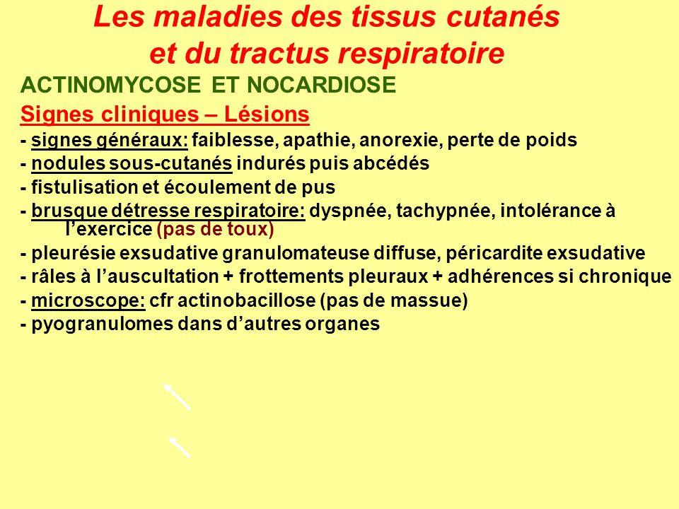 Les maladies des tissus cutanés et du tractus respiratoire