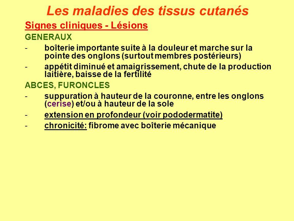 Les maladies des tissus cutanés