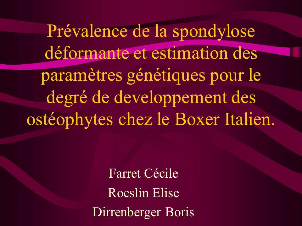 Farret Cécile Roeslin Elise Dirrenberger Boris