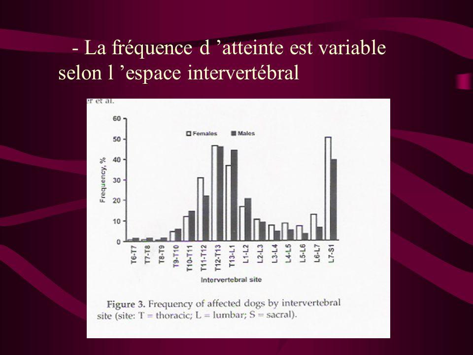 - La fréquence d 'atteinte est variable selon l 'espace intervertébral
