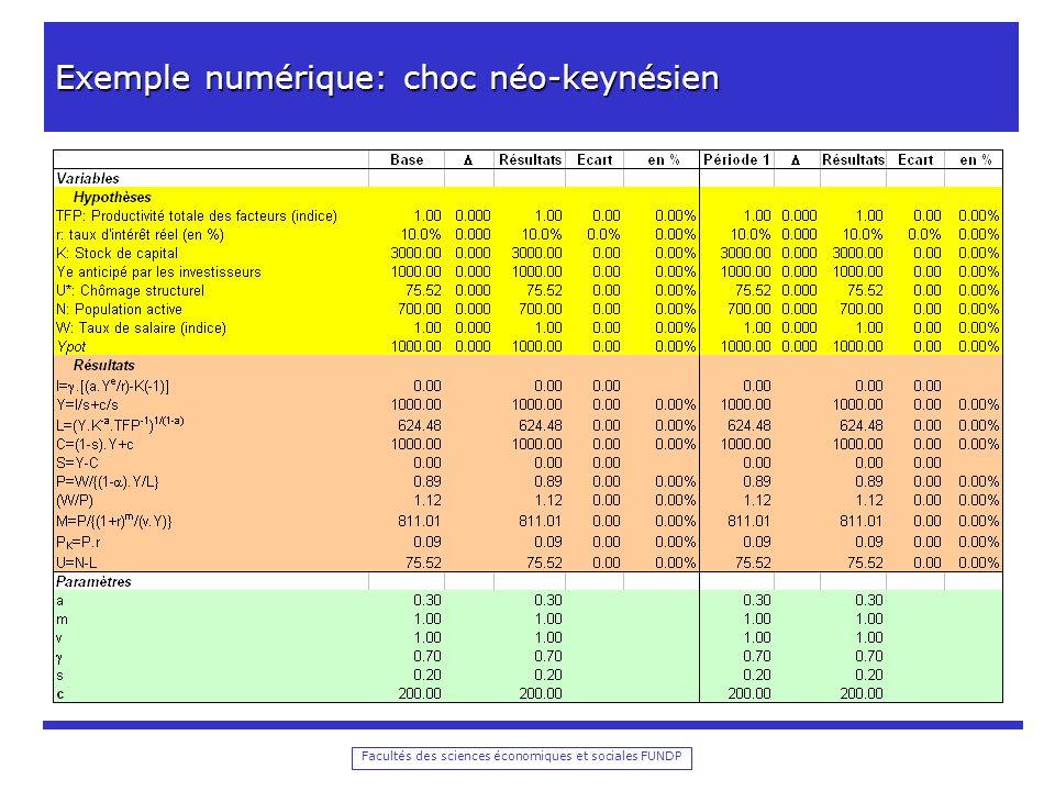 Exemple numérique: choc néo-keynésien