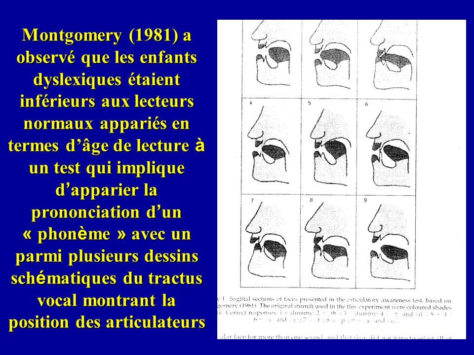 Montgomery (1981) a observé que les enfants dyslexiques étaient inférieurs aux lecteurs normaux appariés en termes d'âge de lecture à un test qui implique d'apparier la prononciation d'un « phonème » avec un parmi plusieurs dessins schématiques du tractus vocal montrant la position des articulateurs