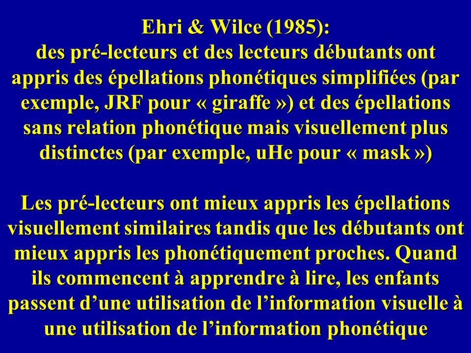 Ehri & Wilce (1985): des pré-lecteurs et des lecteurs débutants ont appris des épellations phonétiques simplifiées (par exemple, JRF pour « giraffe ») et des épellations sans relation phonétique mais visuellement plus distinctes (par exemple, uHe pour « mask ») Les pré-lecteurs ont mieux appris les épellations visuellement similaires tandis que les débutants ont mieux appris les phonétiquement proches.