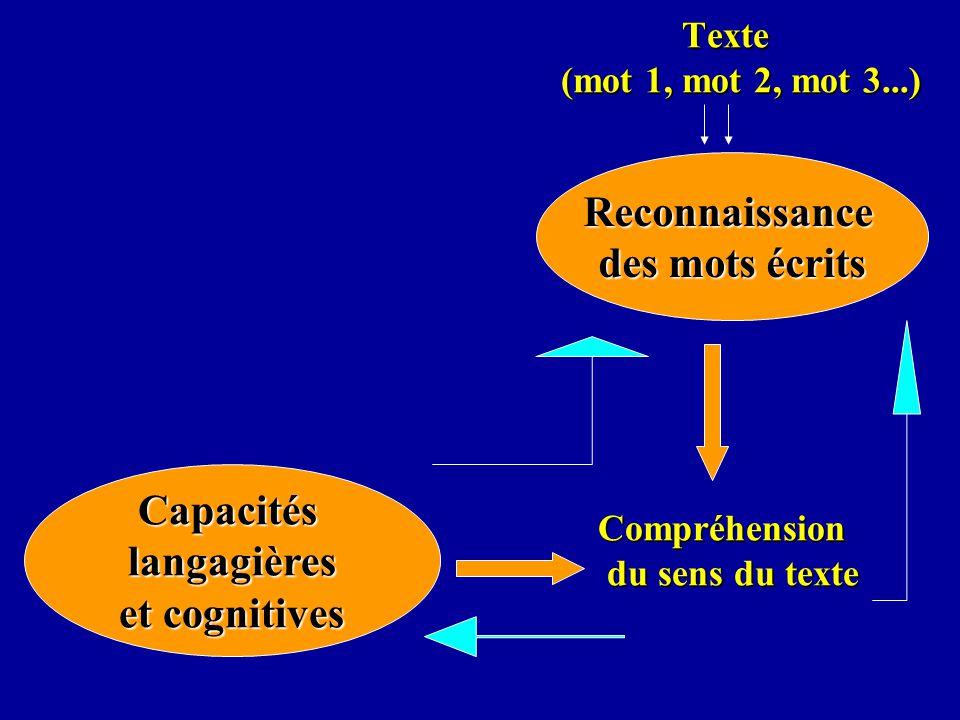 Texte (mot 1, mot 2, mot 3...) Compréhension du sens du texte