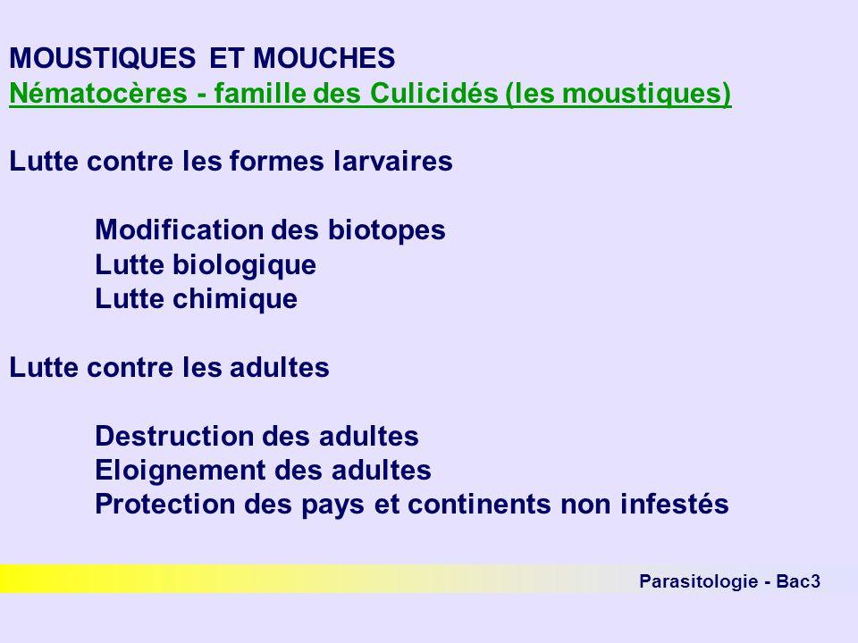 Nématocères - famille des Culicidés (les moustiques)