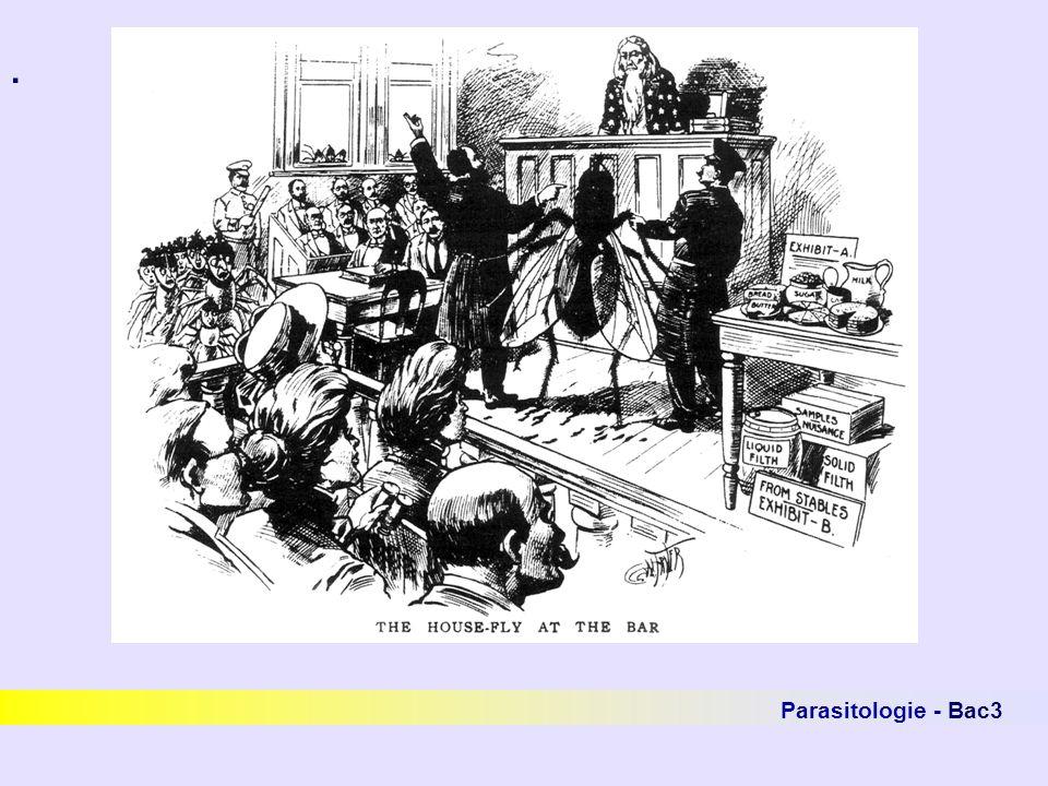 . Parasitologie - Bac3