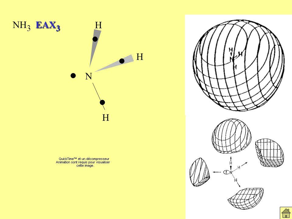 Molécules NH3 NH3 EAX3 N H