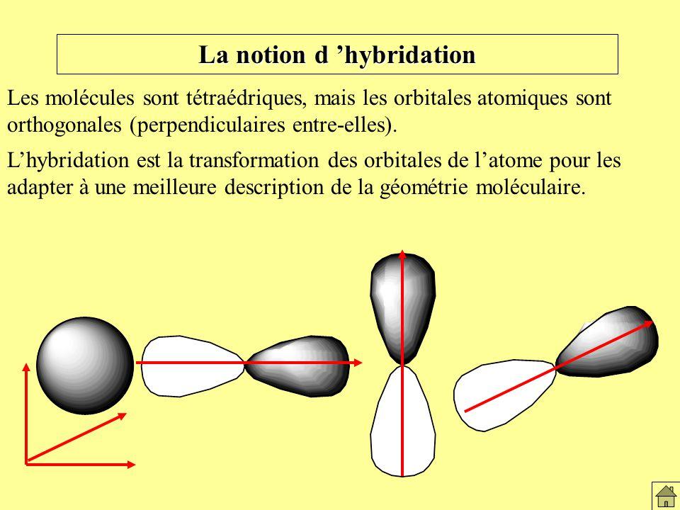 La notion d 'hybridation