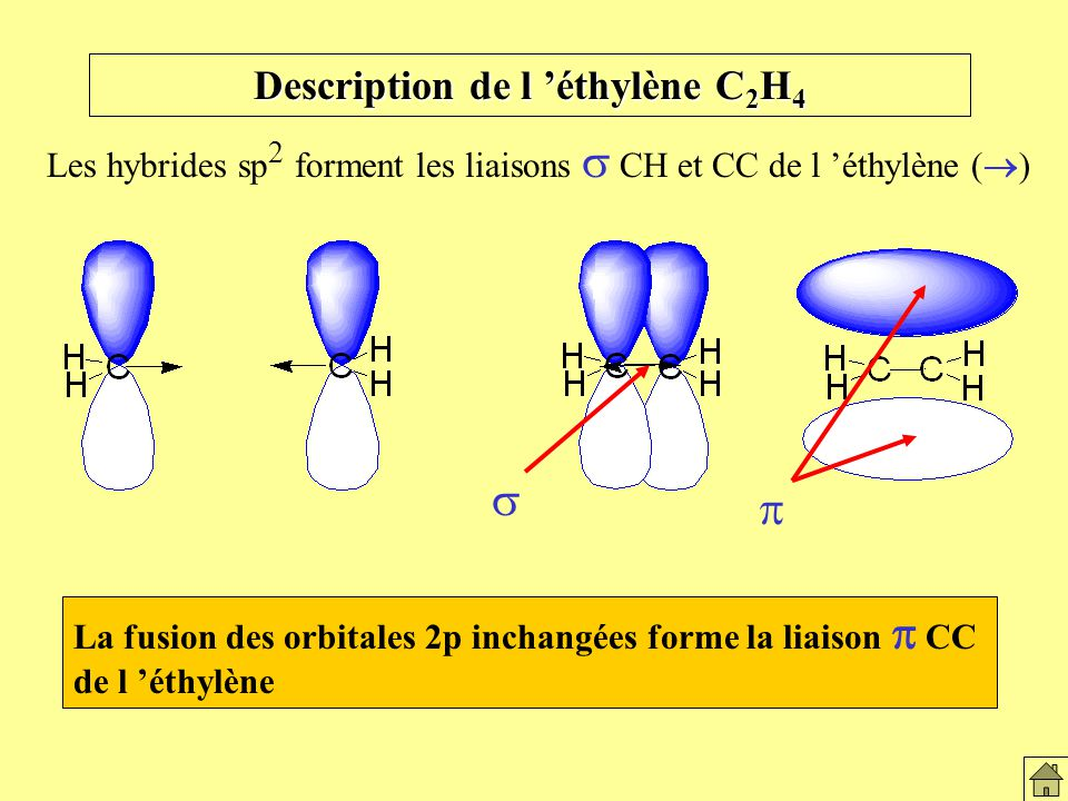 Description de l 'éthylène