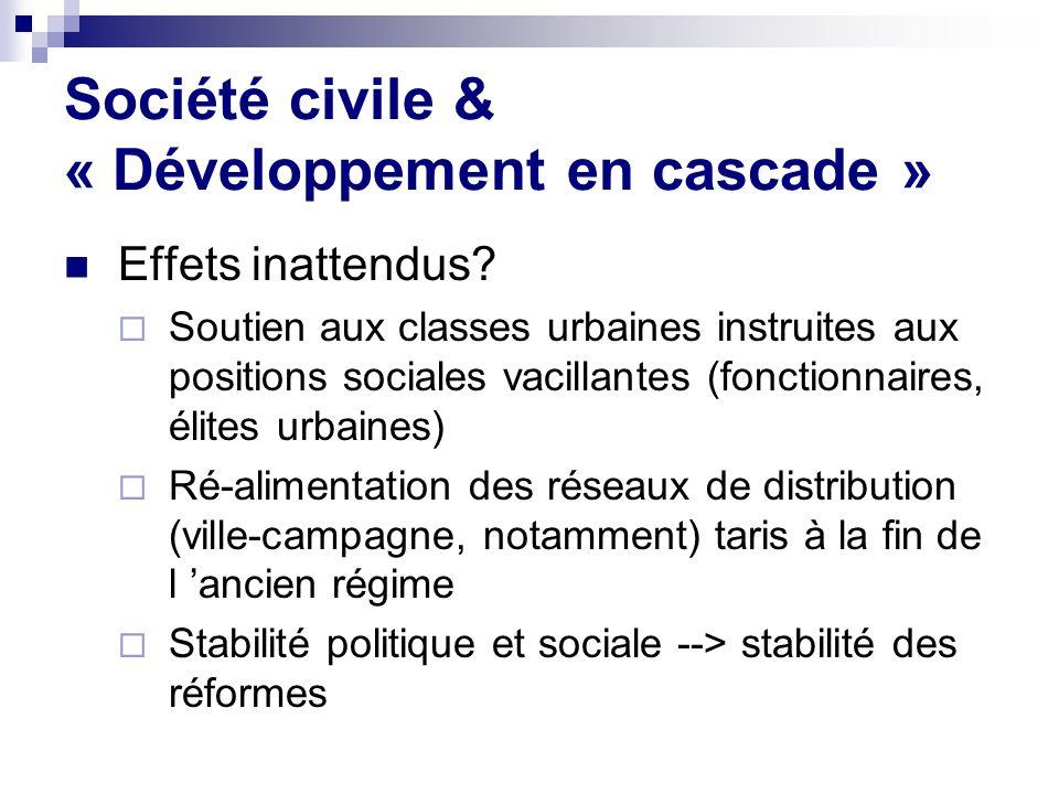 Société civile & « Développement en cascade »