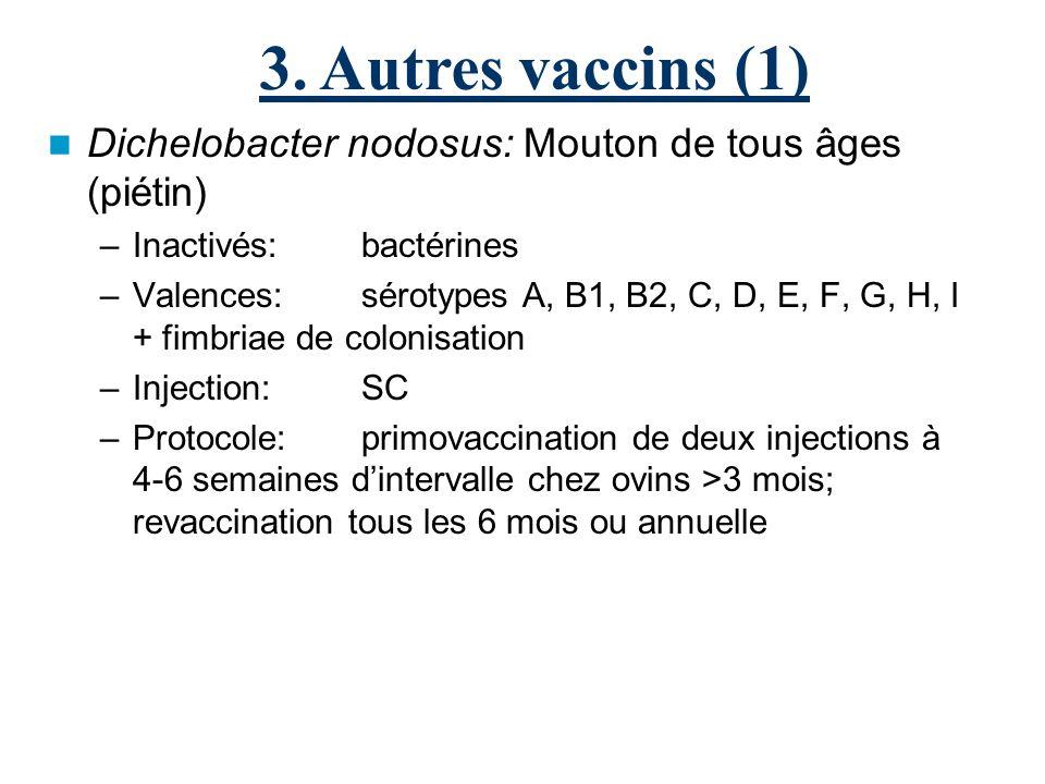 3. Autres vaccins (1) Dichelobacter nodosus: Mouton de tous âges (piétin) Inactivés: bactérines.