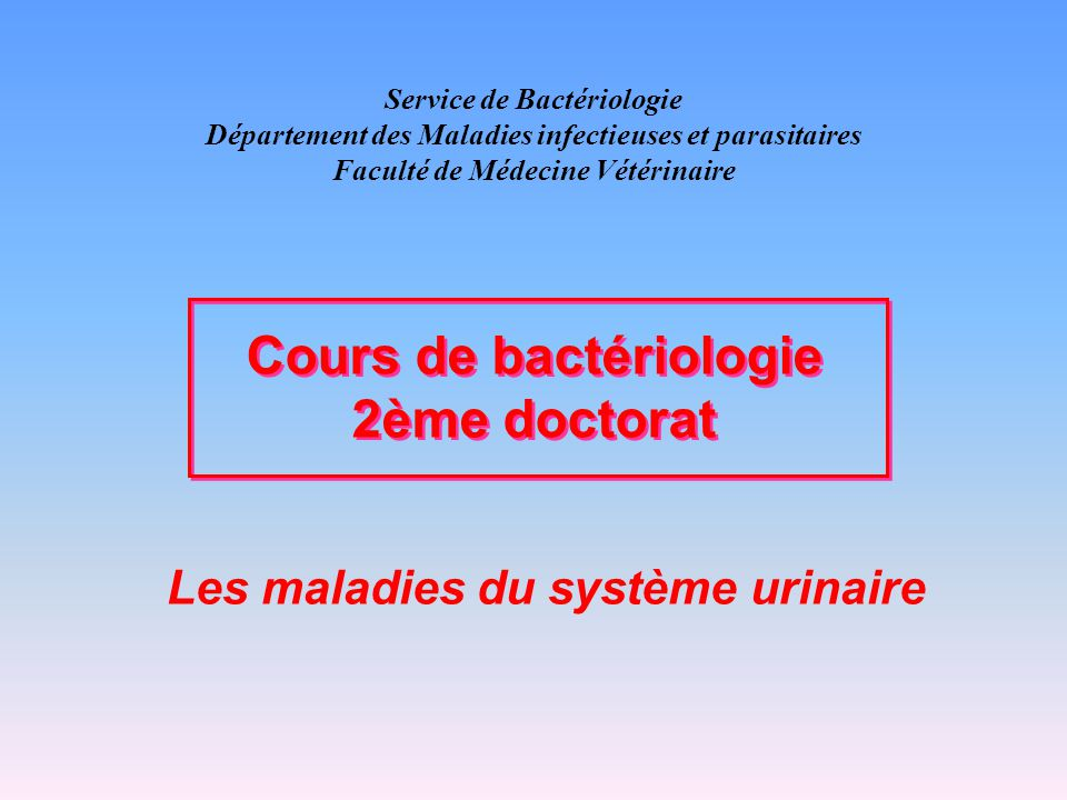 Les maladies du système urinaire