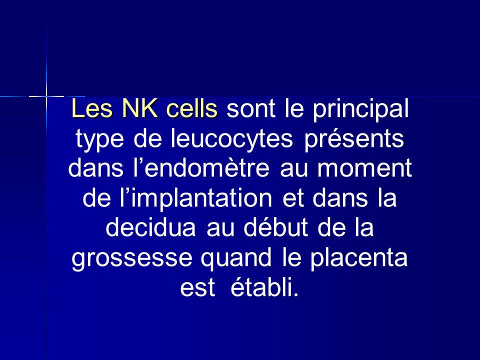 Les NK cells sont le principal type de leucocytes présents dans l'endomètre au moment de l'implantation et dans la decidua au début de la grossesse quand le placenta est établi.