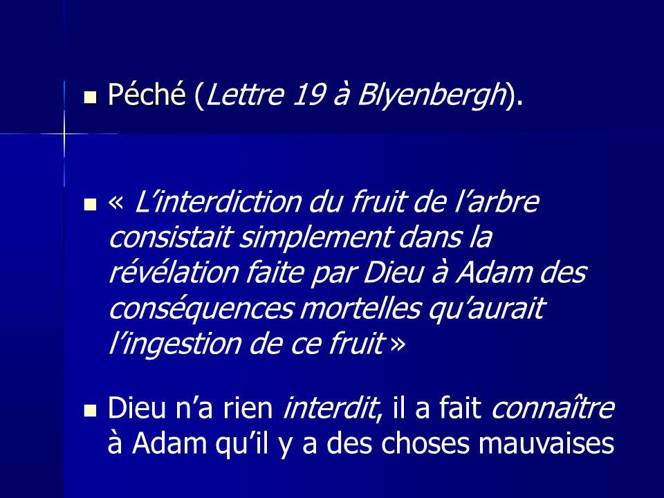 Péché (Lettre 19 à Blyenbergh).