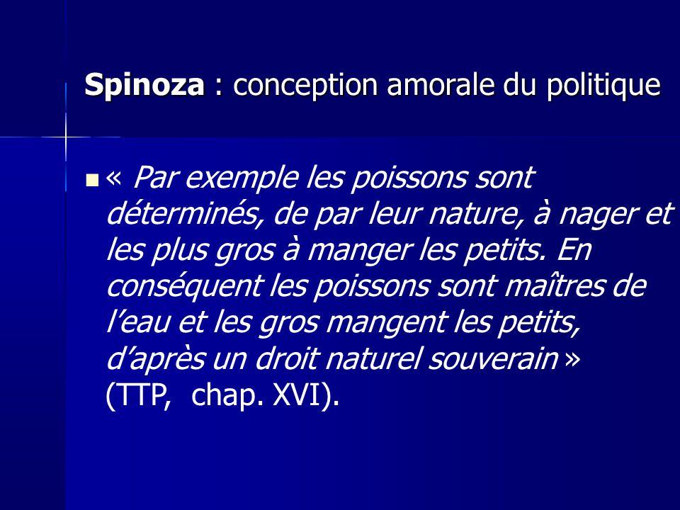 Spinoza : conception amorale du politique