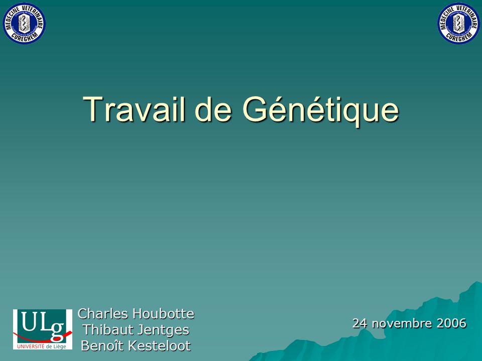 Charles Houbotte Thibaut Jentges Benoît Kesteloot