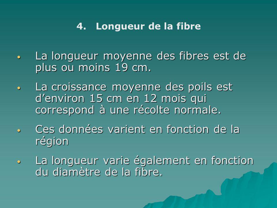 La longueur moyenne des fibres est de plus ou moins 19 cm.