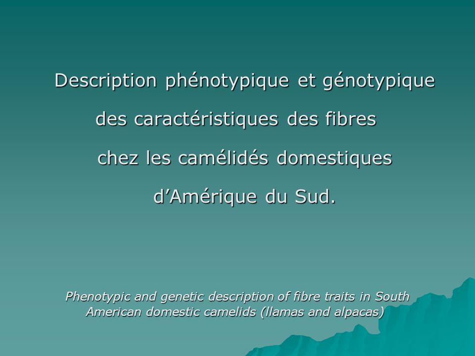 Description phénotypique et génotypique