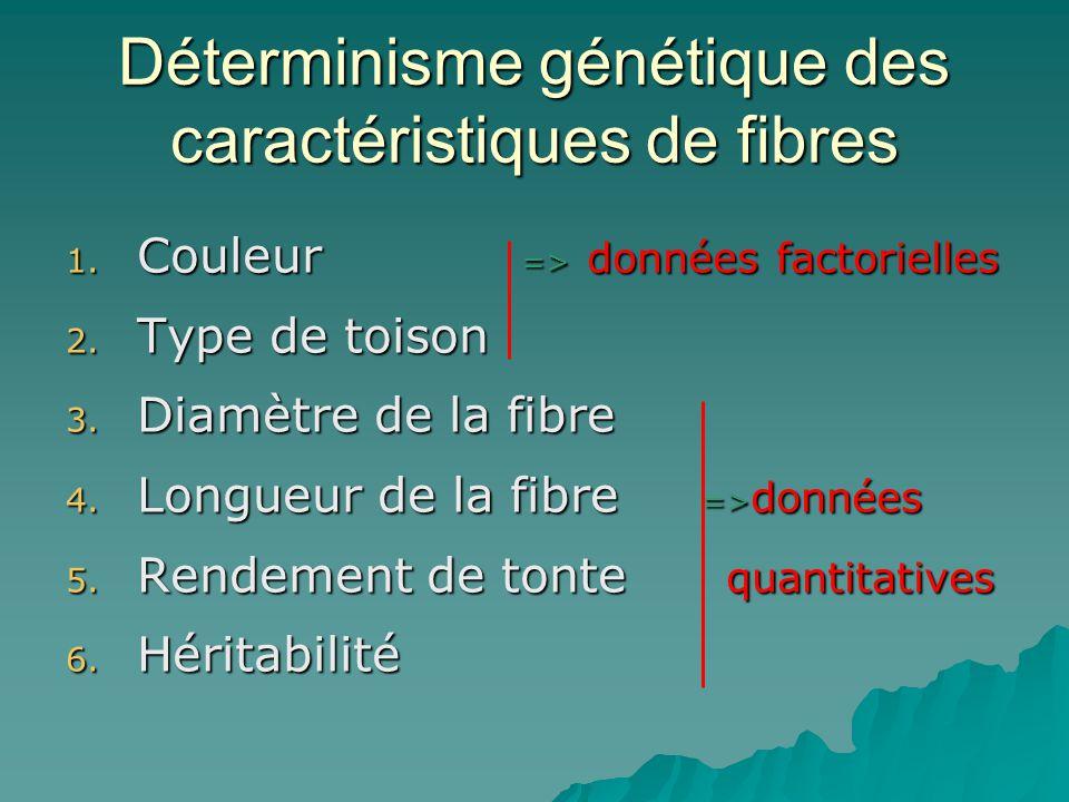 Déterminisme génétique des caractéristiques de fibres