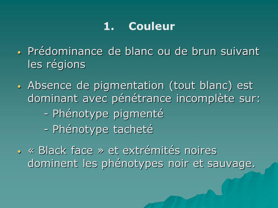 Couleur Prédominance de blanc ou de brun suivant les régions. Absence de pigmentation (tout blanc) est dominant avec pénétrance incomplète sur: