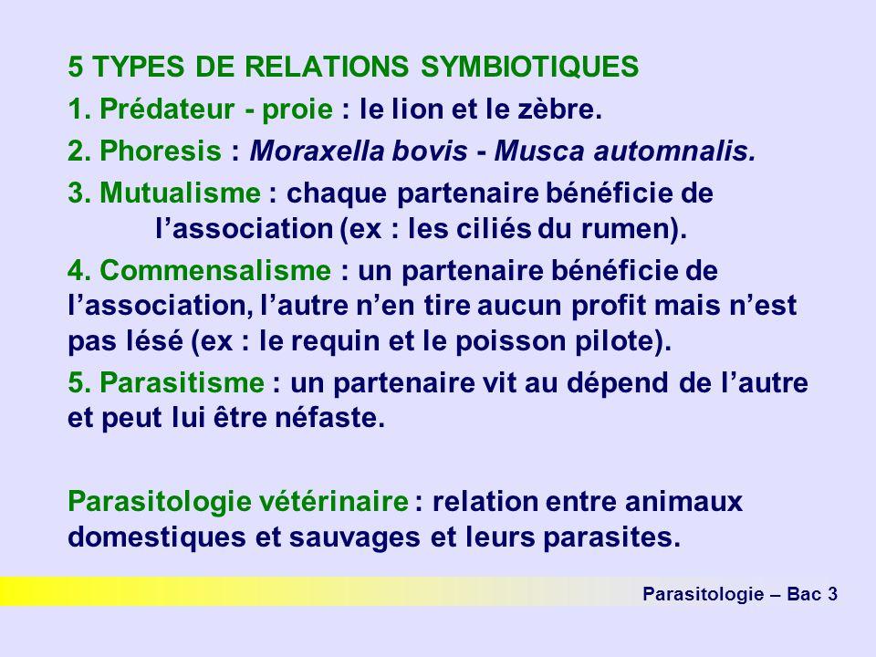 5 TYPES DE RELATIONS SYMBIOTIQUES