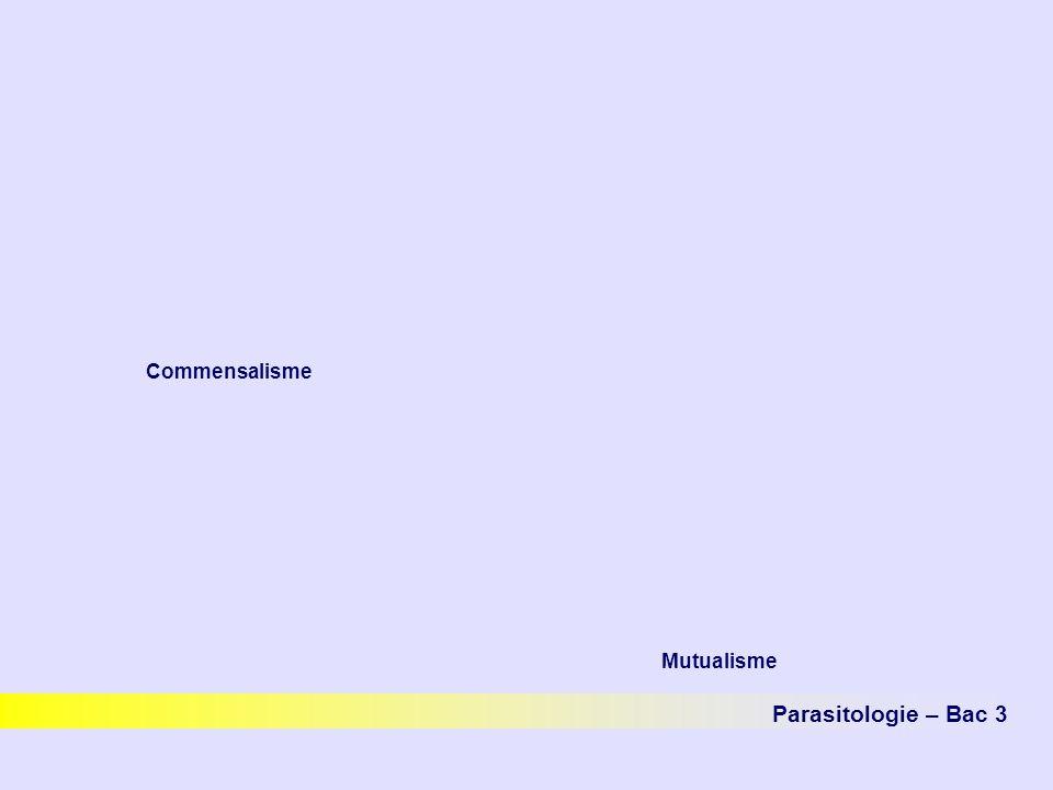 Commensalisme Mutualisme Parasitologie – Bac 3