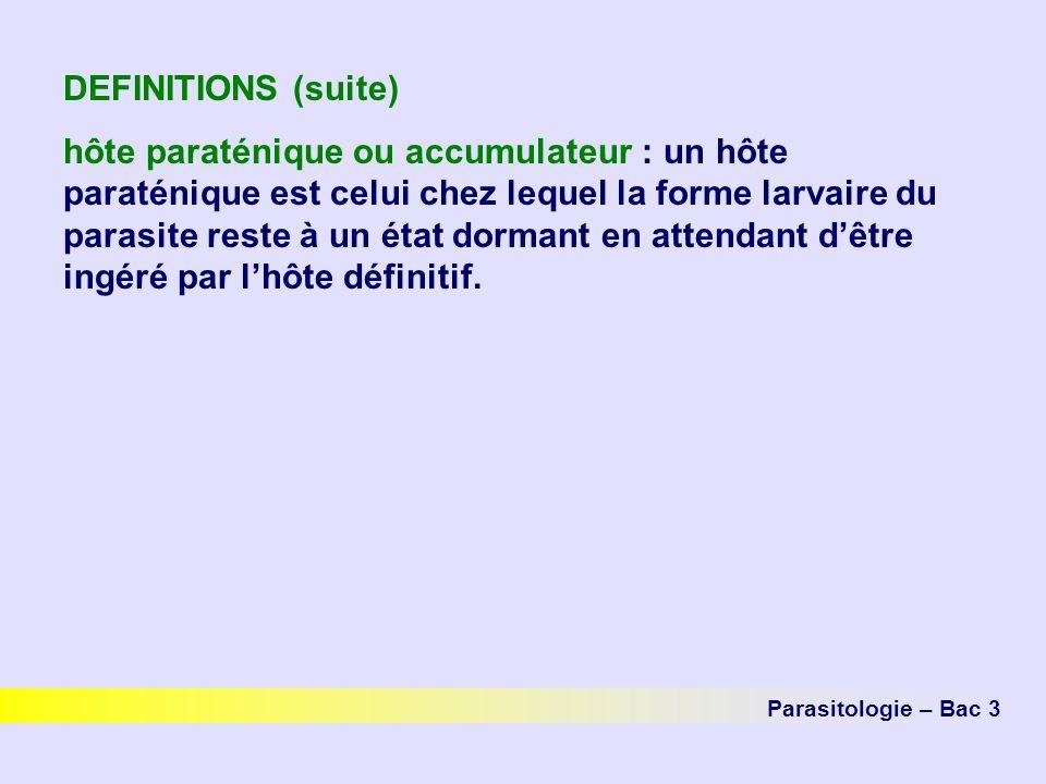 DEFINITIONS (suite)