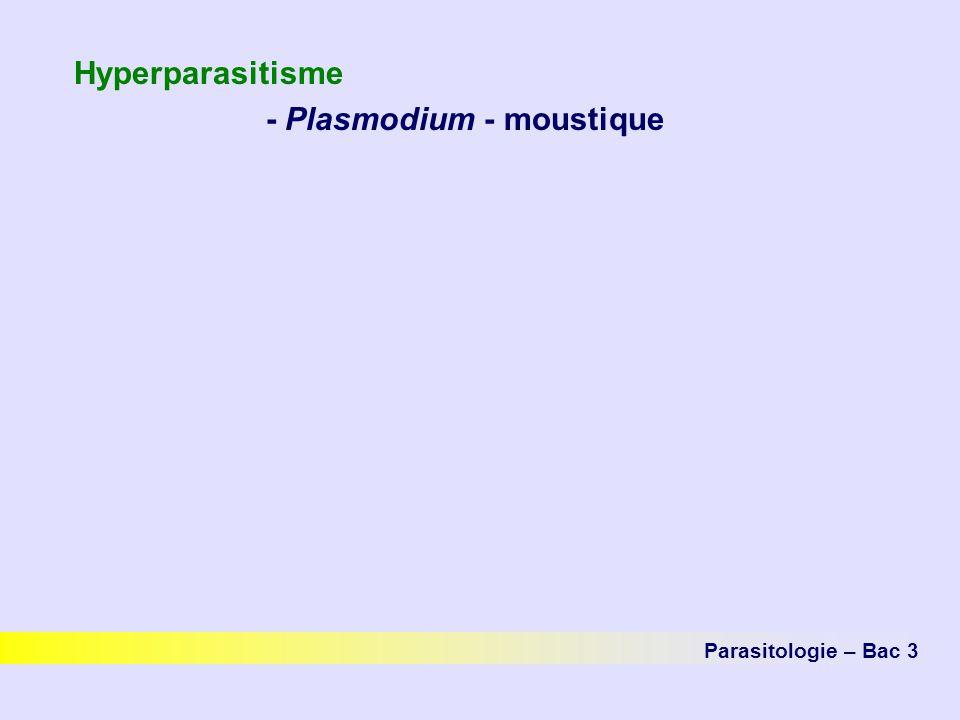 Hyperparasitisme - Plasmodium - moustique
