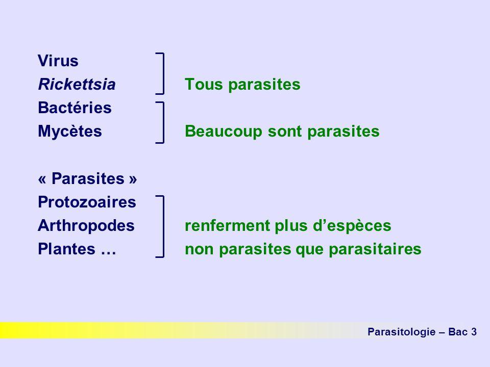 Rickettsia Tous parasites Bactéries Mycètes Beaucoup sont parasites