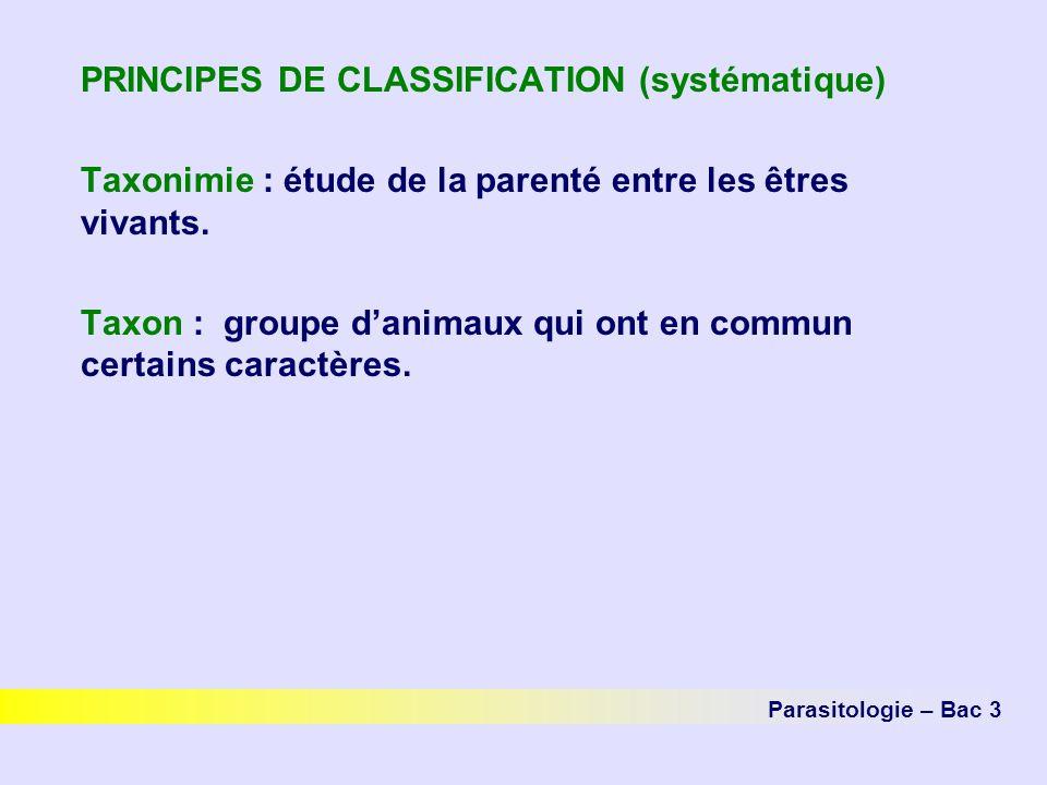 PRINCIPES DE CLASSIFICATION (systématique)
