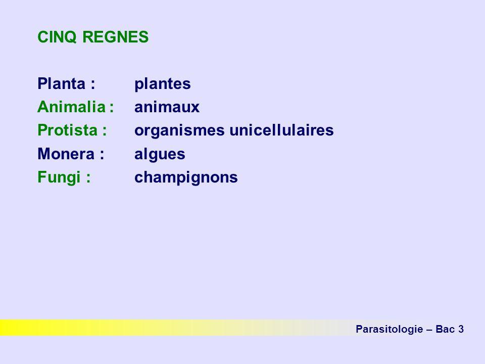 Protista : organismes unicellulaires Monera : algues