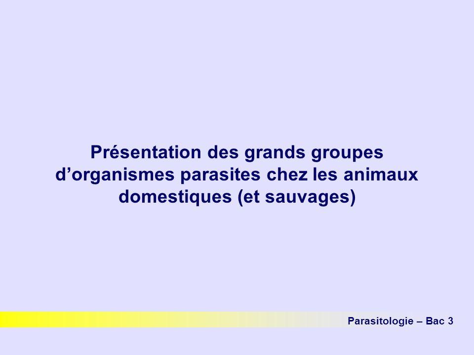 Présentation des grands groupes d'organismes parasites chez les animaux domestiques (et sauvages)