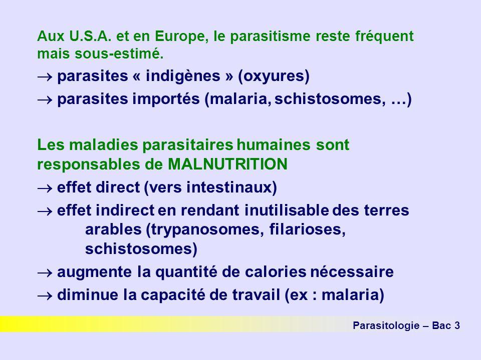 parasites « indigènes » (oxyures)