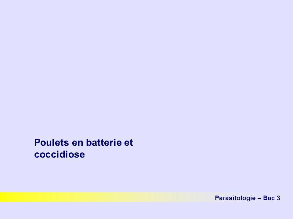 Poulets en batterie et coccidiose Parasitologie – Bac 3