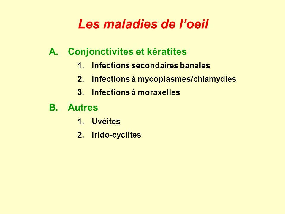 Les maladies de l'oeil A. Conjonctivites et kératites B. Autres