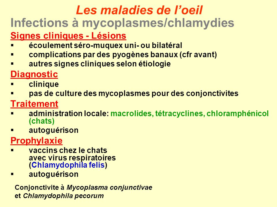 Infections à mycoplasmes/chlamydies