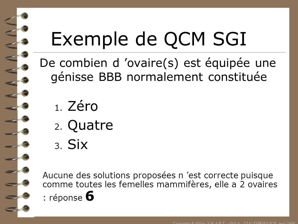 Castaigne & Gilles, S.M.A.R.T. - O.G.A., ULG FORM@SUP, mai 2000