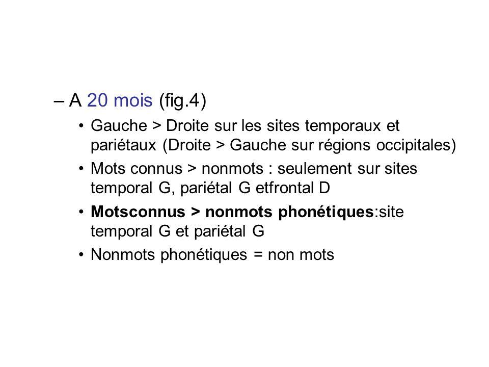 A 20 mois (fig.4) Gauche > Droite sur les sites temporaux et pariétaux (Droite > Gauche sur régions occipitales)