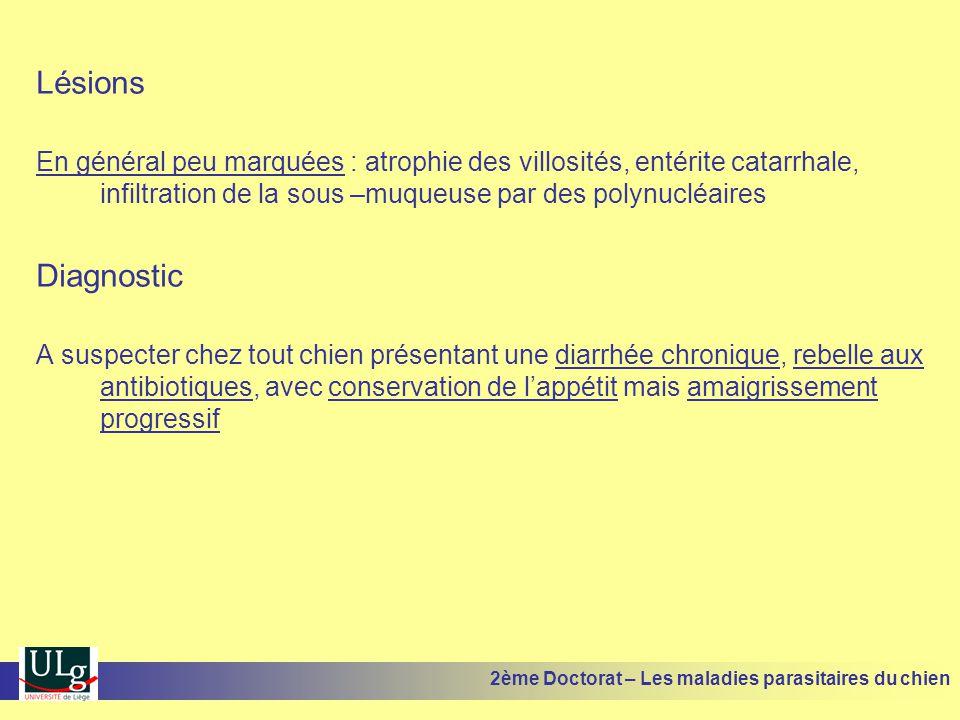 Lésions En général peu marquées : atrophie des villosités, entérite catarrhale, infiltration de la sous –muqueuse par des polynucléaires.