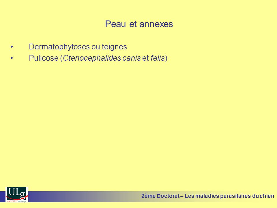 Peau et annexes Dermatophytoses ou teignes