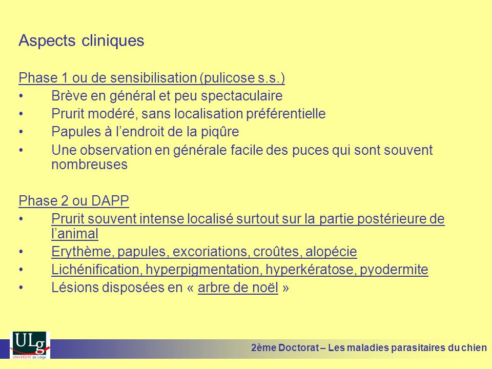 Aspects cliniques Phase 1 ou de sensibilisation (pulicose s.s.)