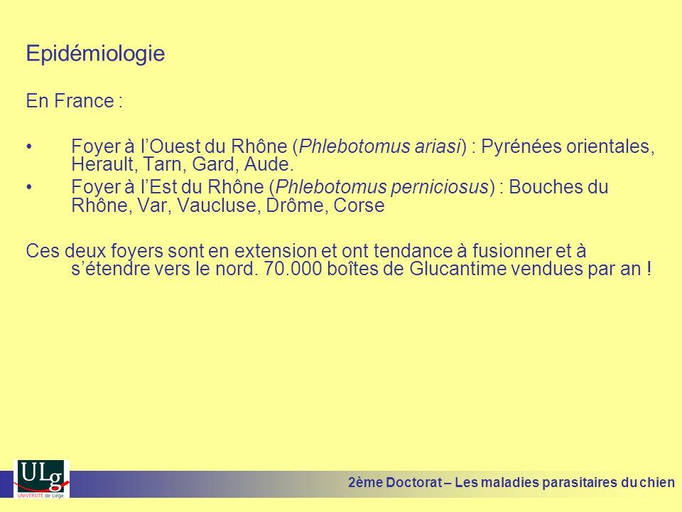 Epidémiologie En France :