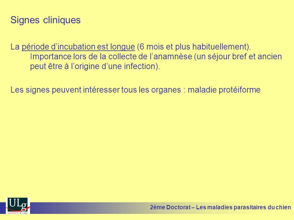 Signes cliniques