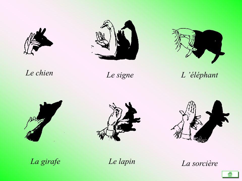 Le chien Le signe L 'éléphant La girafe Le lapin La sorcière
