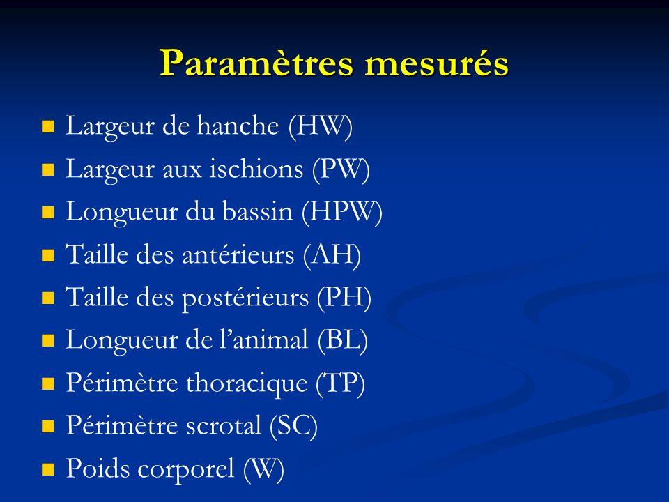 Paramètres mesurés Largeur de hanche (HW) Largeur aux ischions (PW)