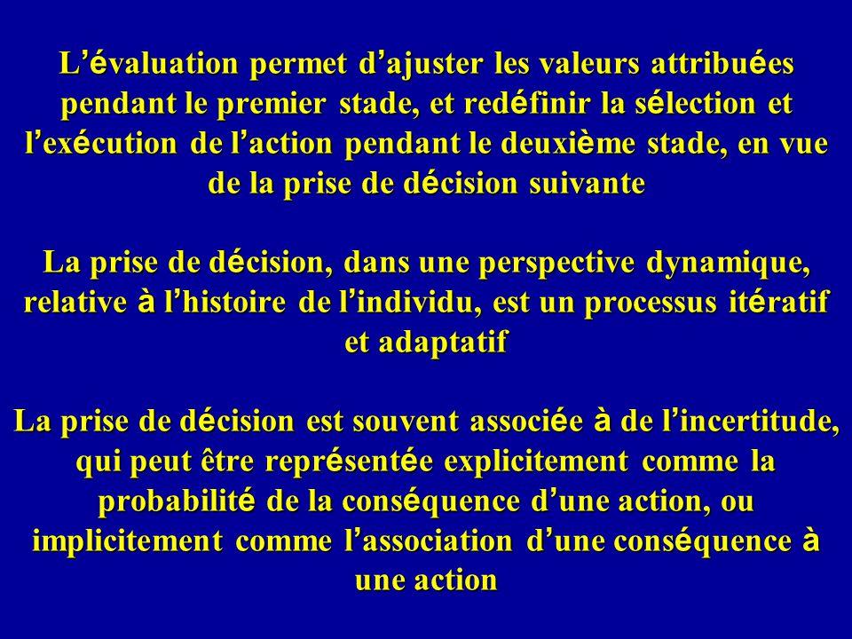 L'évaluation permet d'ajuster les valeurs attribuées pendant le premier stade, et redéfinir la sélection et l'exécution de l'action pendant le deuxième stade, en vue de la prise de décision suivante La prise de décision, dans une perspective dynamique, relative à l'histoire de l'individu, est un processus itératif et adaptatif La prise de décision est souvent associée à de l'incertitude, qui peut être représentée explicitement comme la probabilité de la conséquence d'une action, ou implicitement comme l'association d'une conséquence à une action