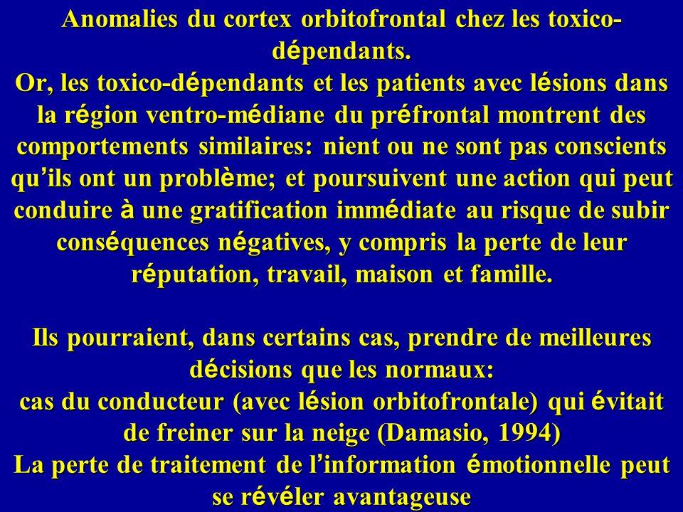 Anomalies du cortex orbitofrontal chez les toxico-dépendants
