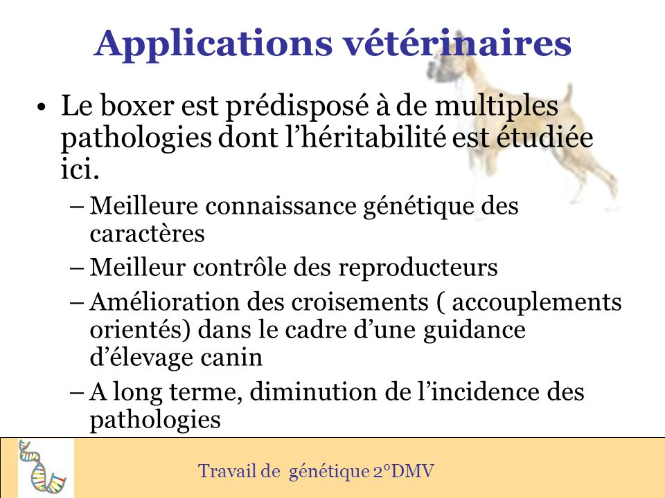 Applications vétérinaires